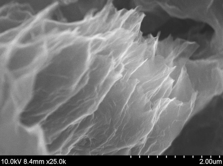 SEM image of acs material GA