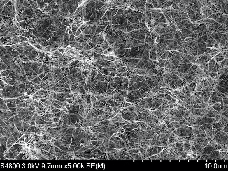 SEM Image (01) of ACS Material Carbon Nanotube Sponges