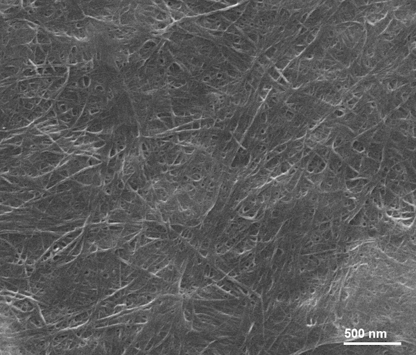 SEM Image of ACS Material Single-walled Carbon Nanotube Paper
