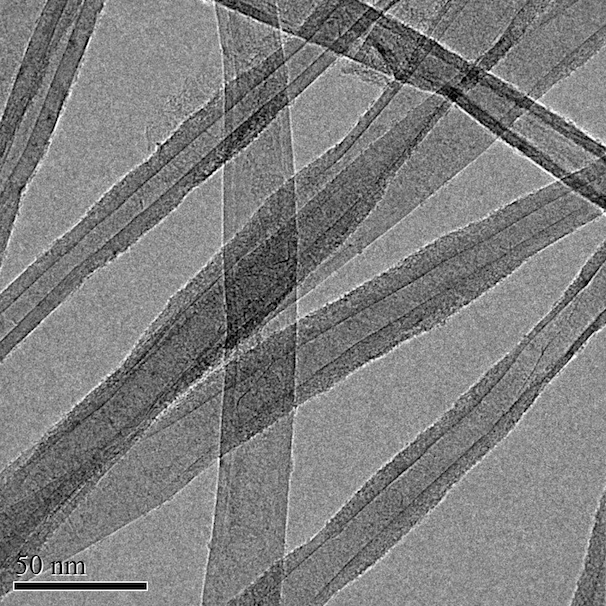 TEM Image (01) of ACS Material Carbon Nanotube Sponges