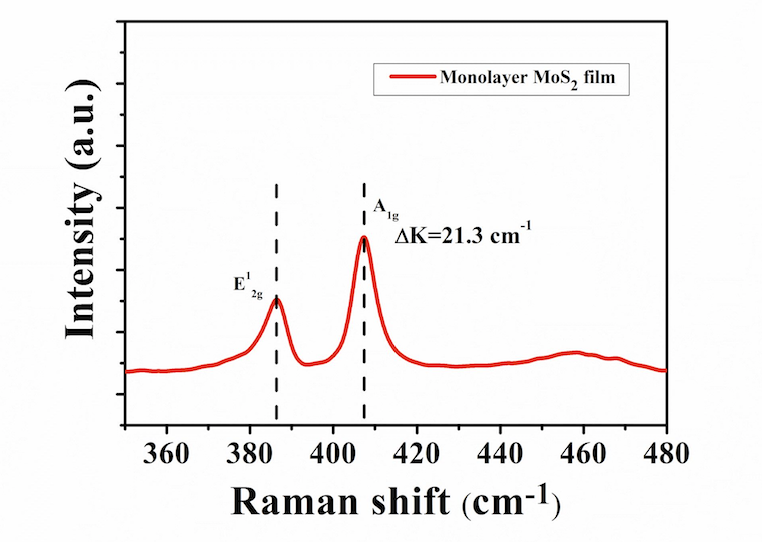 Typical Raman of ACS Material Monolayer MoS2 Film on SiO2/Sapphire (8mm x 8mm)