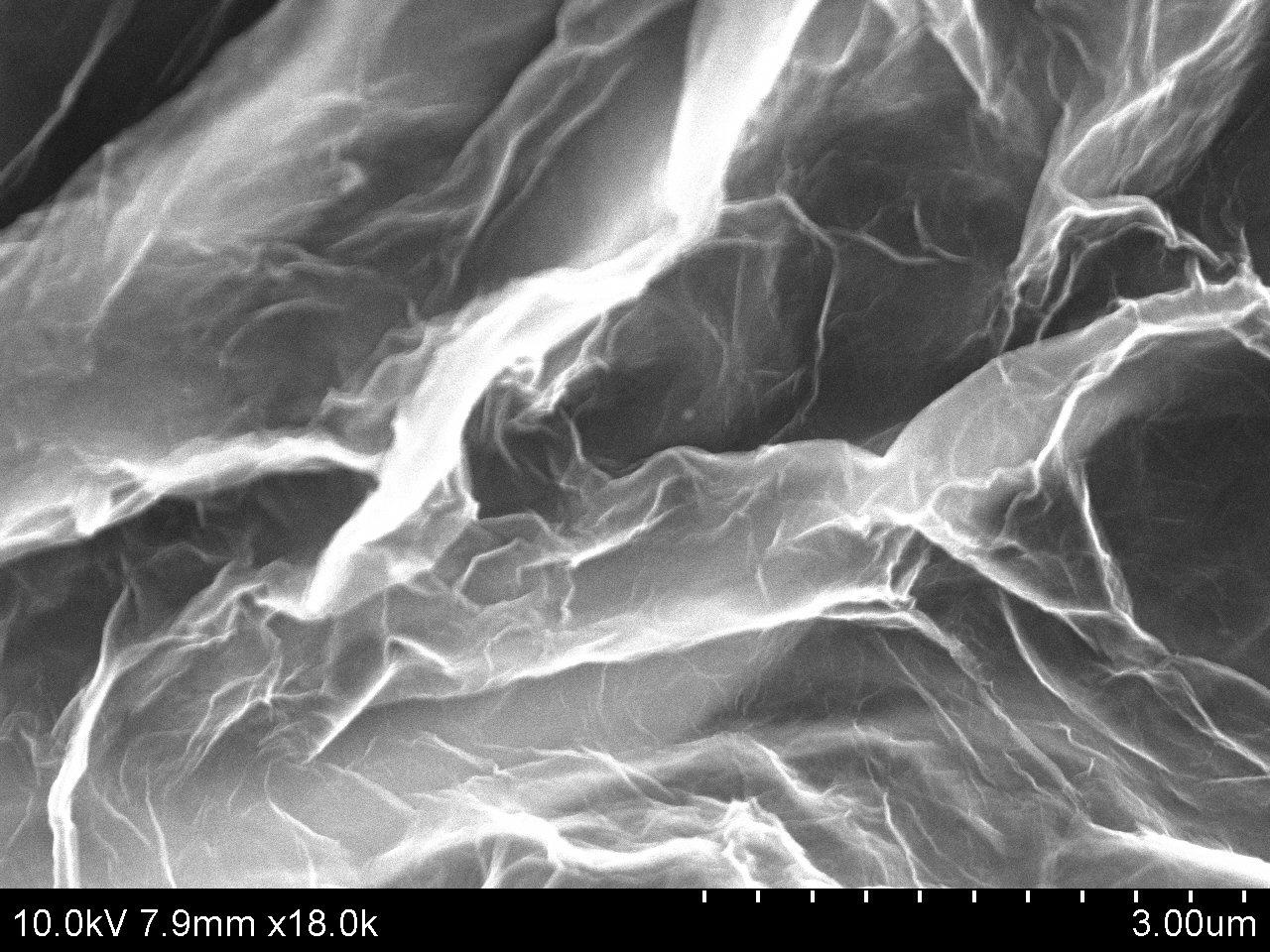 Typical SEM Image of ACS Material Graphene Aerogel/N-doped Graphene Aerogel (2)