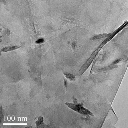 Typical SEM of ACS Material ACS Material Ti3C2Tx MXhene (few-layered nanoflakes)