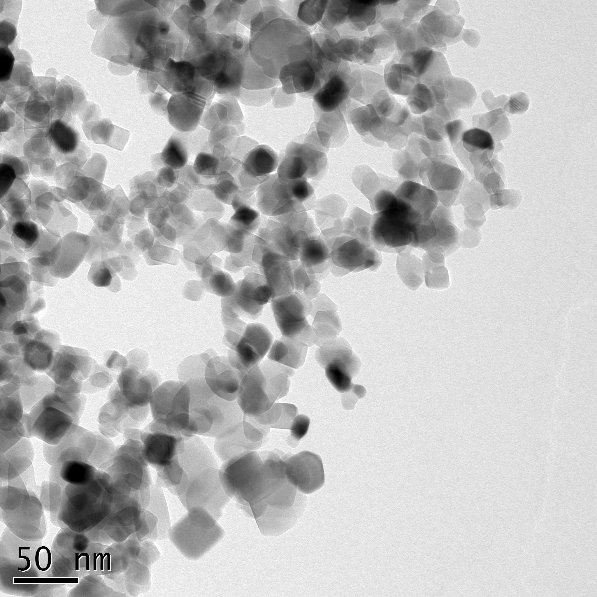 Typical TEM Image of ACS Material TiO2