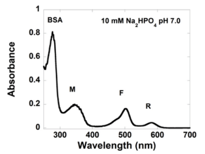 Absorption Spectra GlowDots