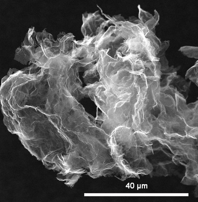 SEM Image of ACS Material Graphene Nanoplatelets