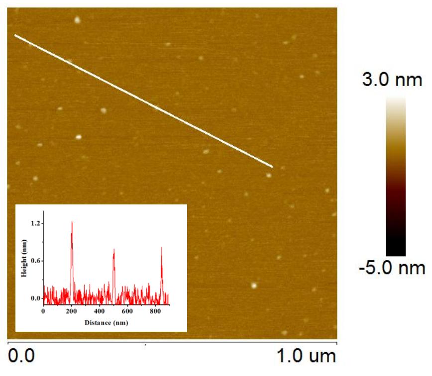 WS2 Quantum Dots-AFM