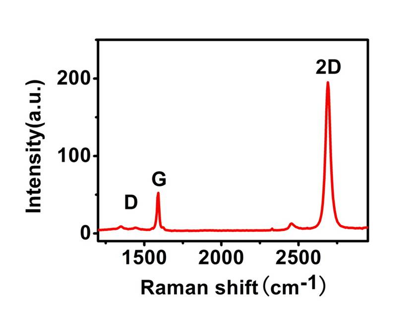 Typical Raman Spectrum of a Single Layer Graphene