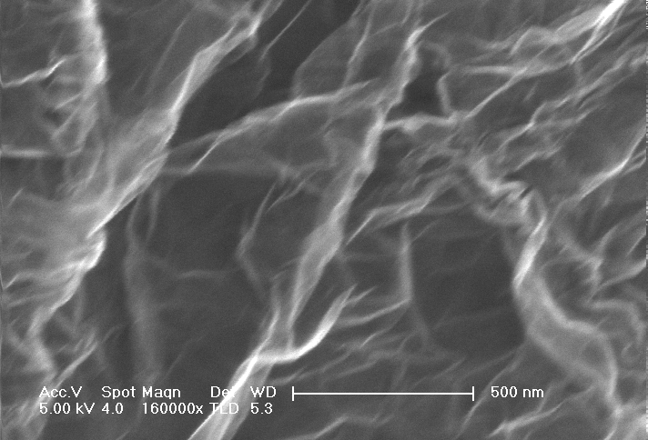 SEM Image of Single Layer Graphene